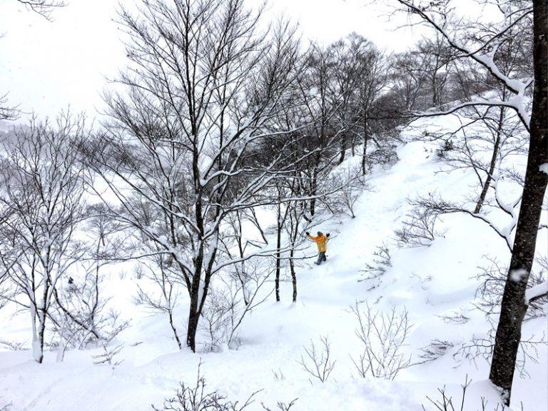"""2017/01/17 岐阜県 高鷲スノーパーク&ダイナランド """"パウダーハンティング"""""""