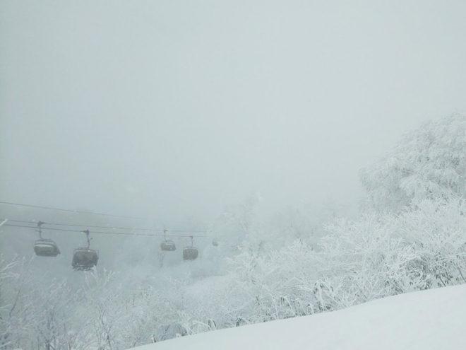 やまびこコースは雪とガス。コースも調子よくなかったな。